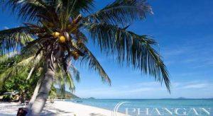 koh phangan resort