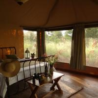Ikweta Safari Camp